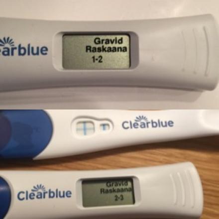 kinesisk kalender køn gravid før ægløsning