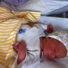 Välkommen till världen Miro